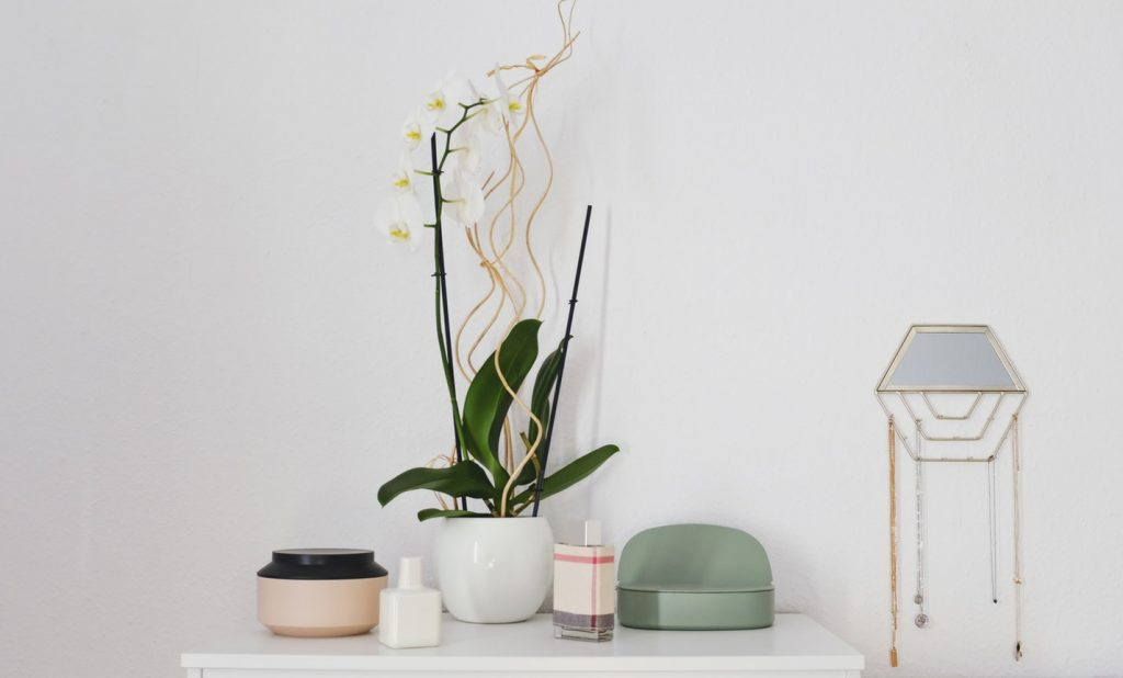 organized table with plants and containers